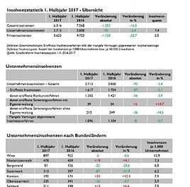 Creditreform PRIVATINSOLVENZSTATISTIK 1. Halbjahr 2017: 29 Insolvenzen pro Werktag