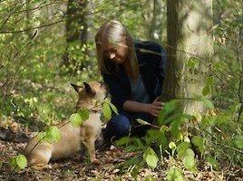 Allerheiligen und Allerseelen: Totengedenken mit Hund aber ohne Kerzen