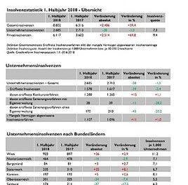 Creditreform FIRMENINSOLVENZSTATISTIK 1. Halbjahr 2018: 21 Insolvenzen pro Werktag