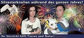 Video- und Plakatkampagne von Gerhard Kornschober zur Aufklärung über Feuerwerkskörpern