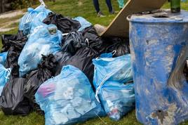 MitarbeiterInnen von Nestlé sammeln gemeinsam Müll in Donauauen in Fischamend