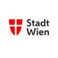 Fahne gegen Gewalt gegen Frauen am Wiener Rathaus gehisst