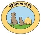 Welpe in Friedburg gefunden – ausgesetzt?
