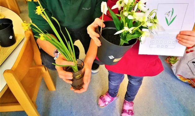 Sozialprojekt Kindergarten