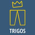 Analyse der TRIGOS Einreicher zu Corona bestätigt: Nachhaltige Unternehmen sind zukunftsfähig und optimistisch