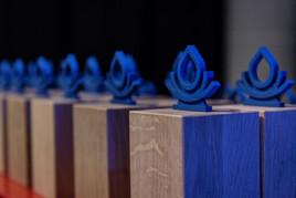 Verleihung der 4. Drupal Splash Awards für Deutschland und Österreich 2020 (online)