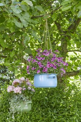 Florale Kostbarkeiten zum Muttertag!