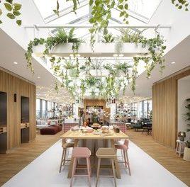 Hotel Zoku: Eröffnung des neuen Home-Office-Hybrid Konzept in Wien