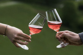 PREMIERE: Internationales Roséweinfestival Steiermark